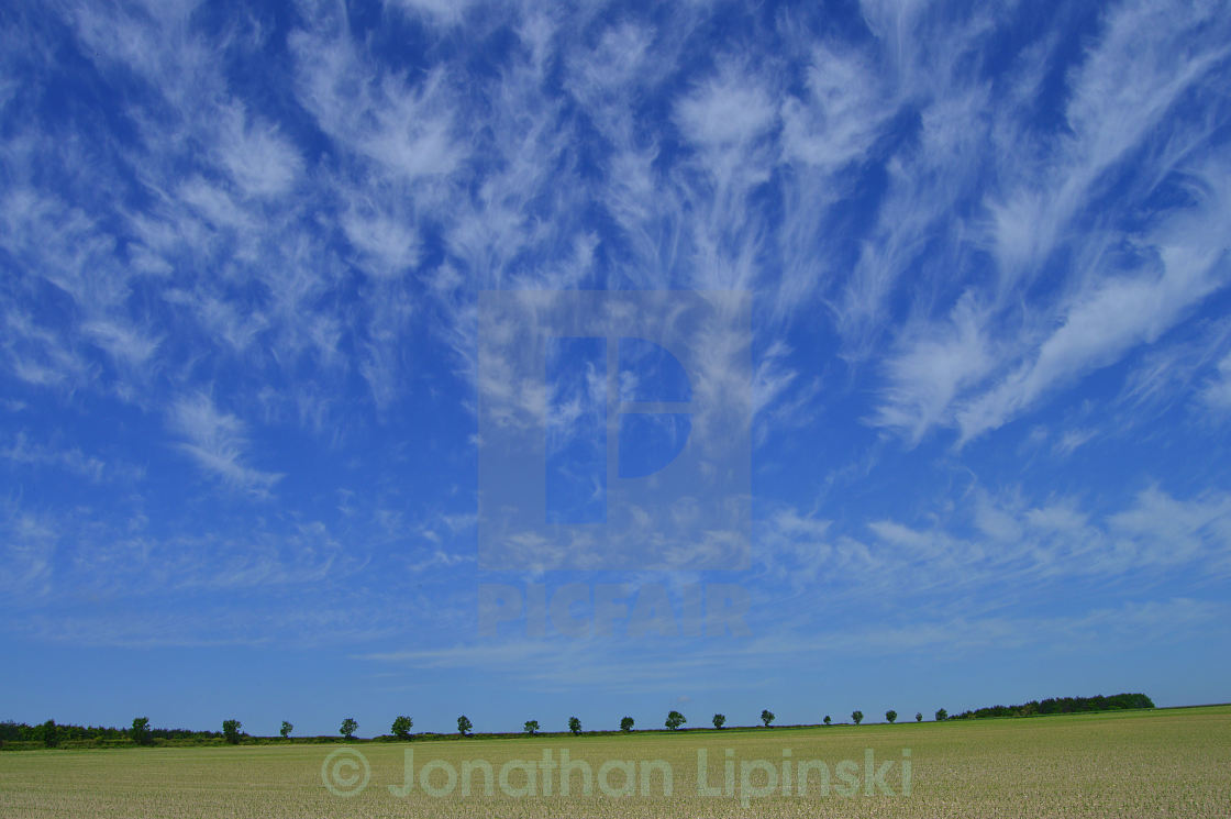 """""""Clouds across a field"""" stock image"""