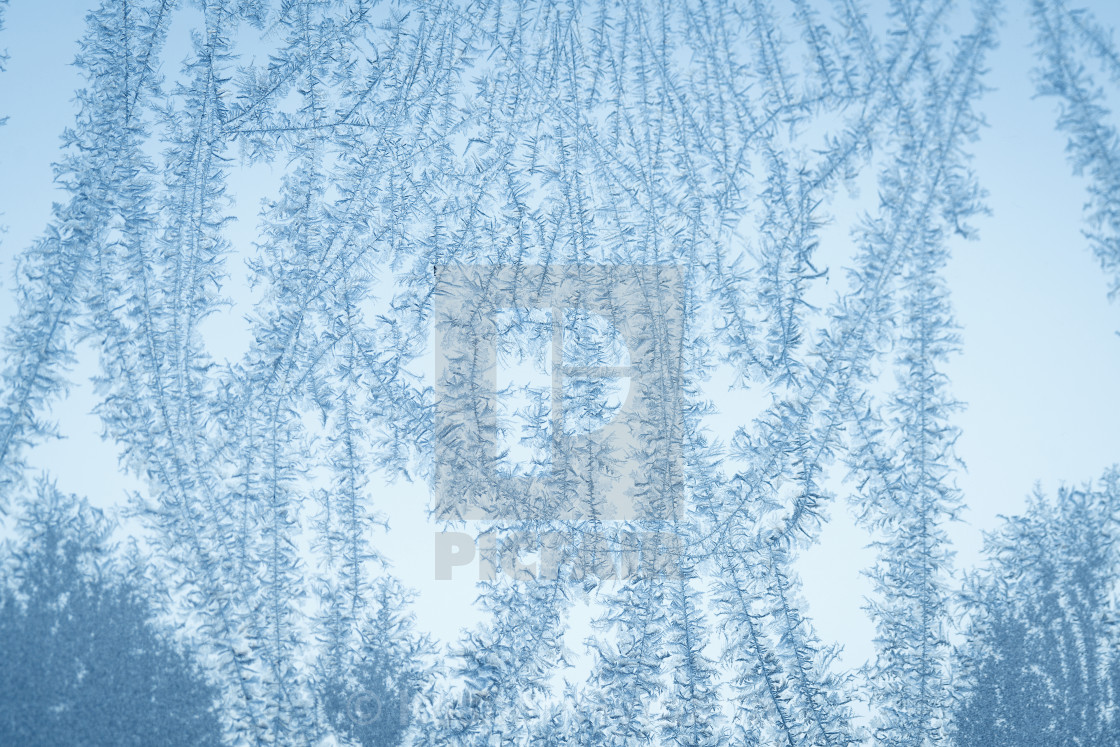 """""""Frost flake patterns on a window in December"""" stock image"""