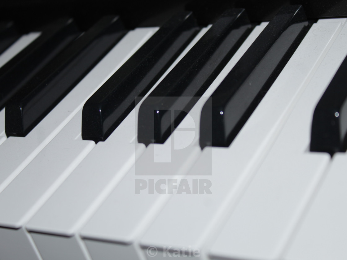 Piano Keyboard License Download Or Print For 10 00 Photos Picfair