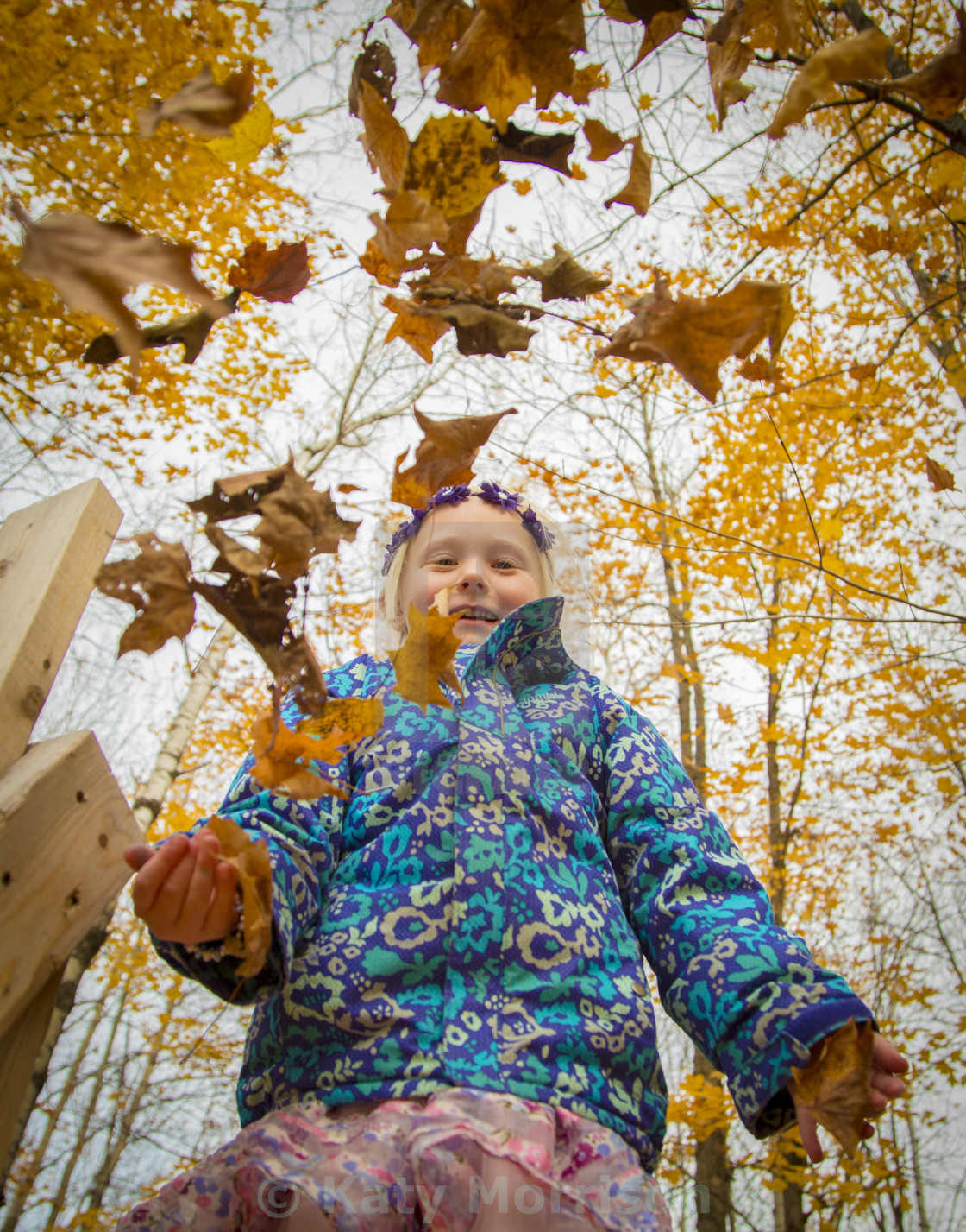 """Girl plays with Autumn leaves"" stock image"