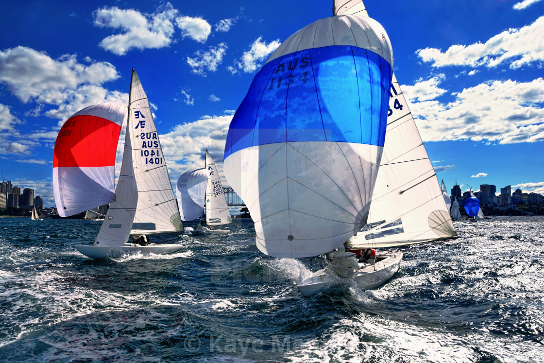 """Spinnakers and Sails by Kaye Menner"" stock image"