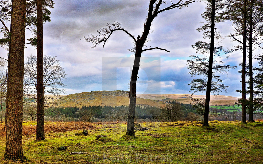 """""""On The Exmoor Fringes"""" stock image"""