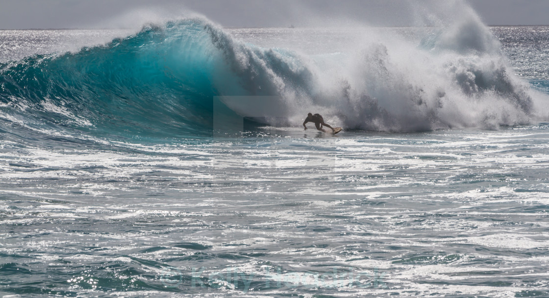 """Surfing in Hawaii"" stock image"