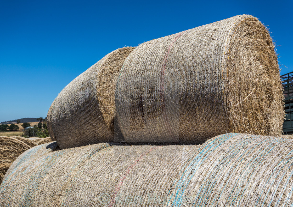 """""""Round hay bales stacked"""" stock image"""