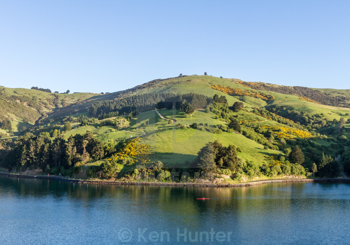 """Otago Harbour, Dunedin, New Zealand"" stock image"