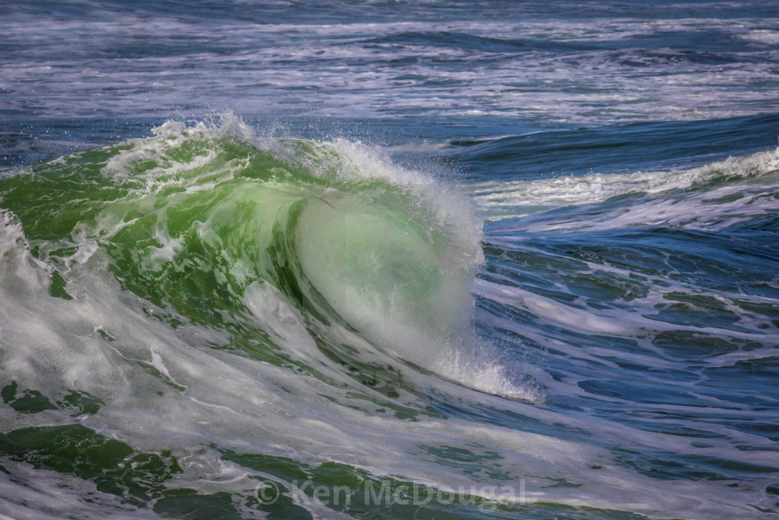 """""""Green Wave Curl"""" stock image"""