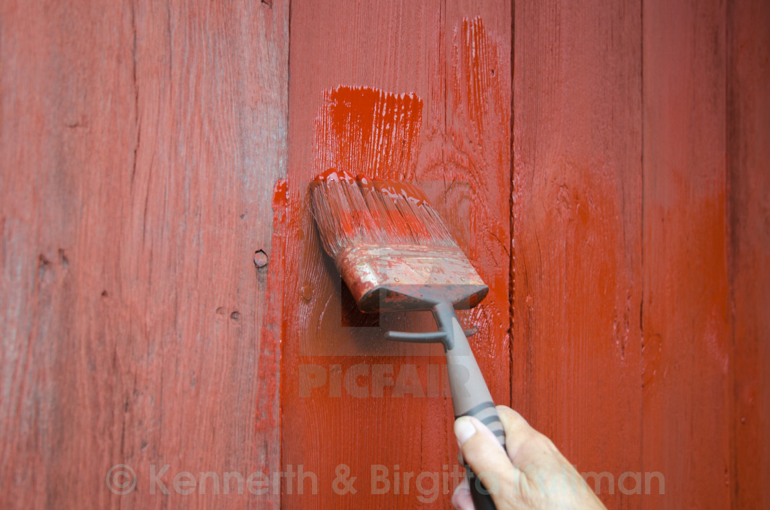 """Painting a plank wall"" stock image"