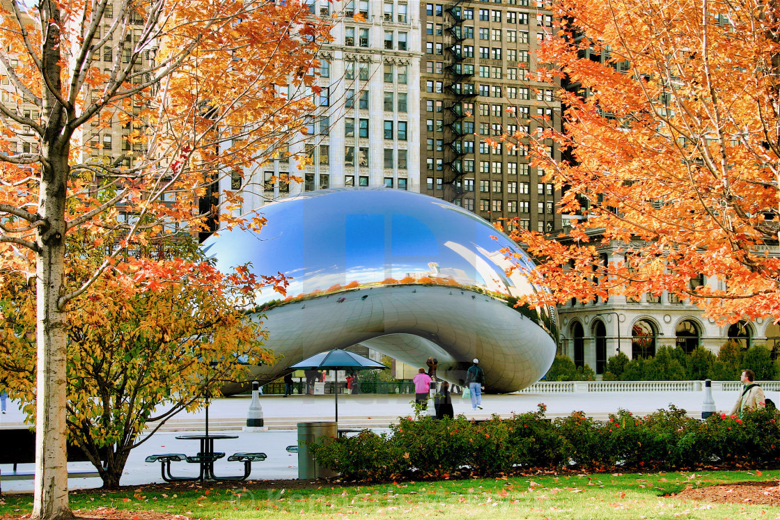 """Fall colors and The Bean"" stock image"