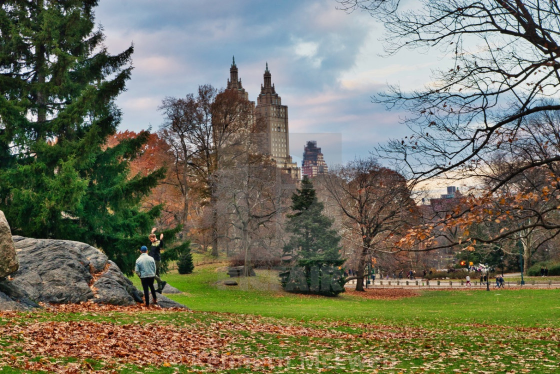 """Central Park, New York"" stock image"