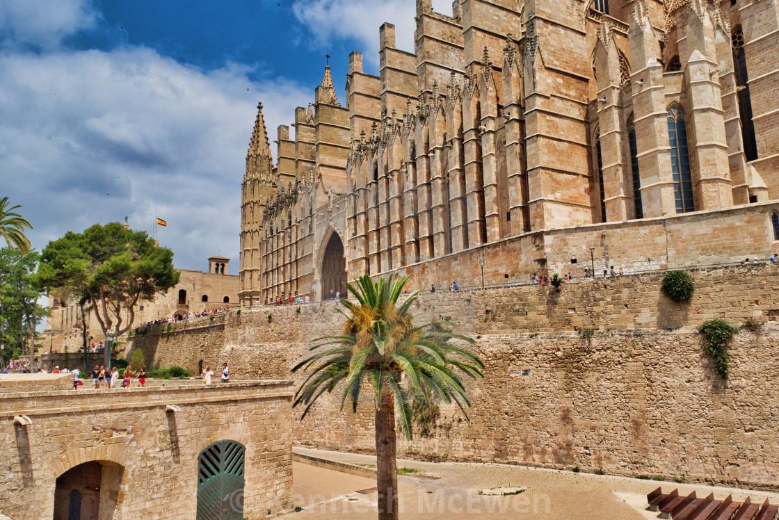 """La Seu Cathedral Palma de Mallorca"" stock image"