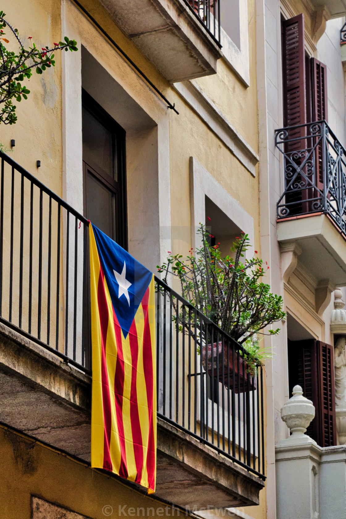 """Catalan independence flag"" stock image"