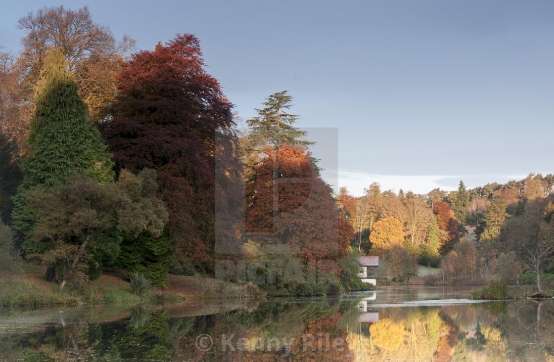 """Autumnal Morning"" stock image"