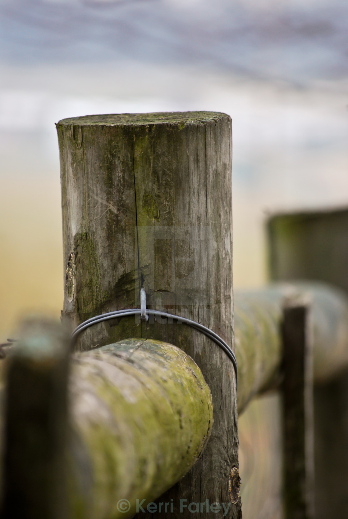 """""""Fence Post"""" stock image"""