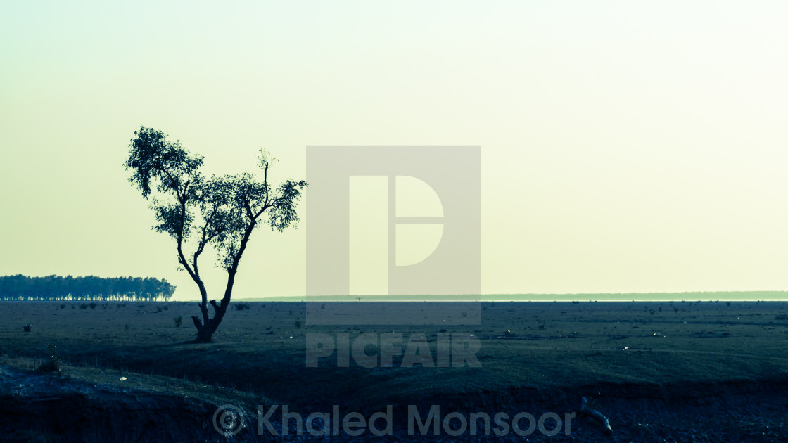 """a simple beach-scape"" stock image"