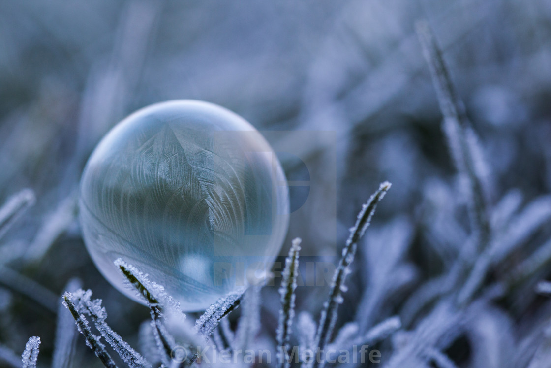 """Frozen Ice Bubble"" stock image"