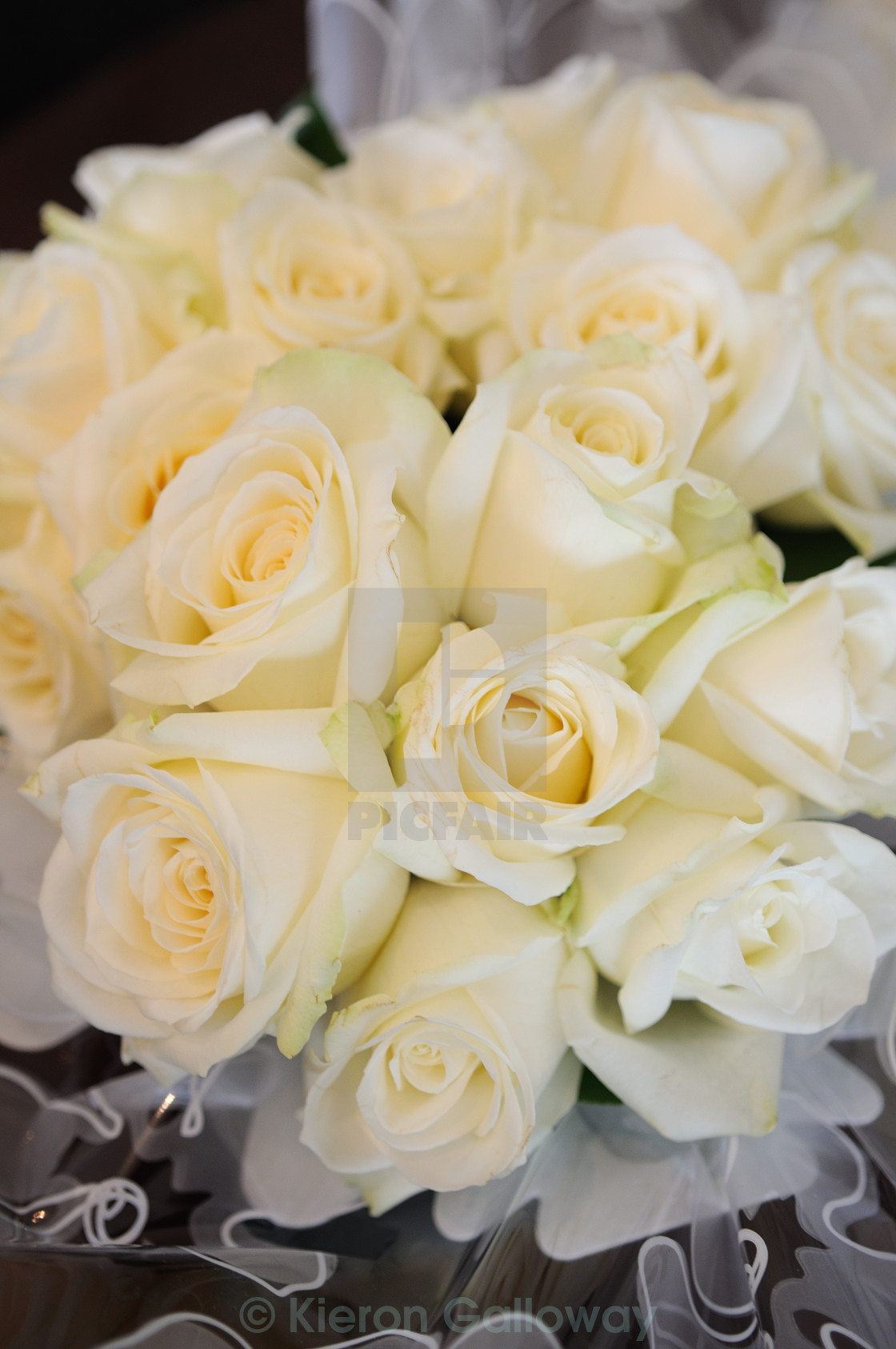 """Brides bouquetd white roses"" stock image"