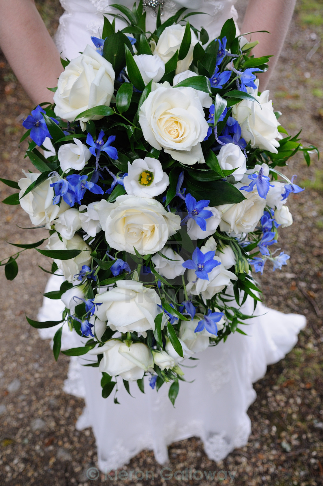 """Brides bouquet blue and white"" stock image"
