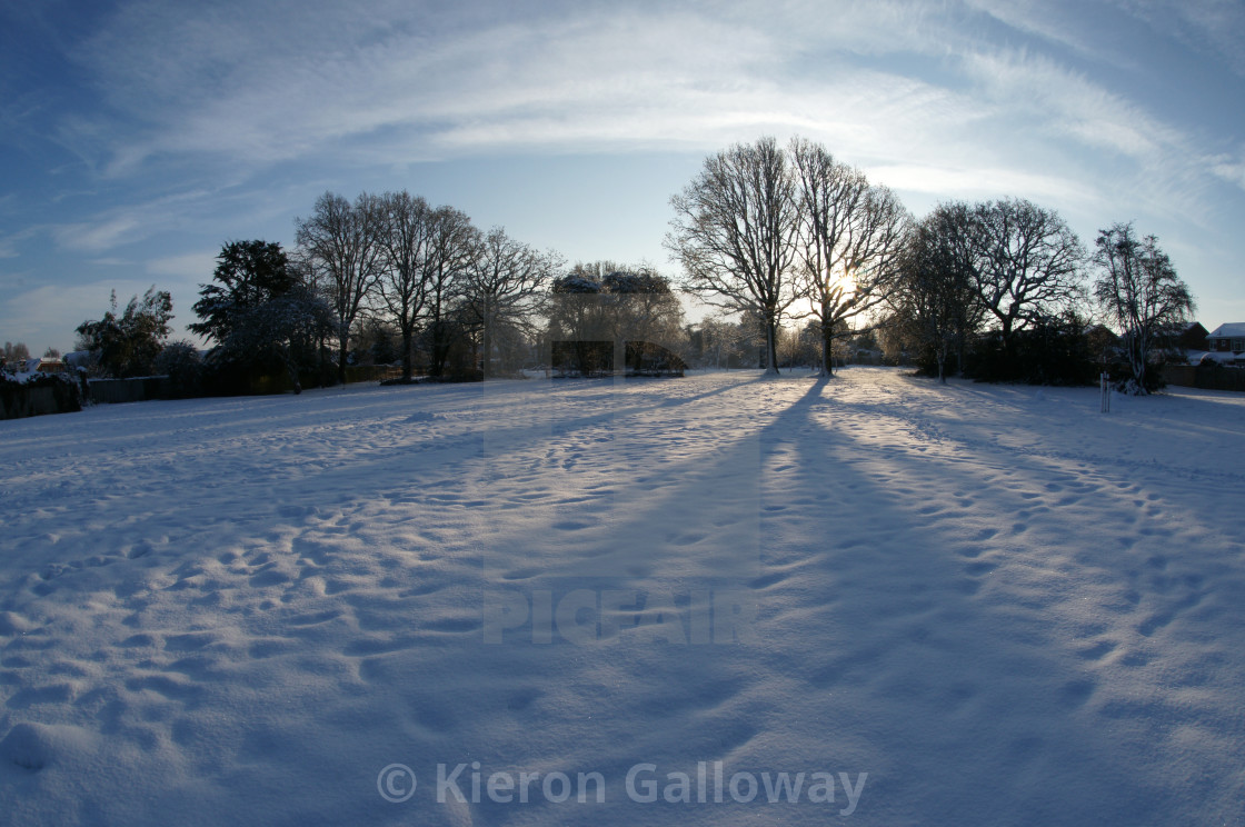 """Snow landscape, old orchard, Basingstoke 2019"" stock image"