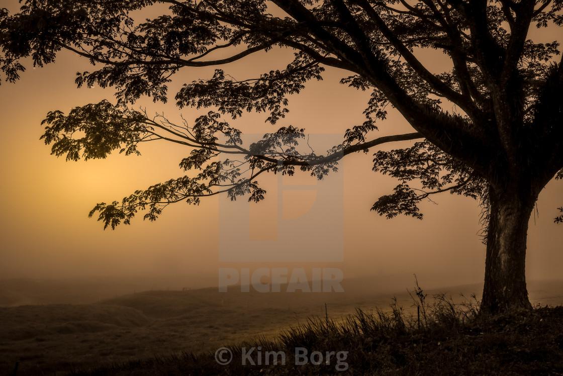 """""""Soothing Sunrise"""" stock image"""