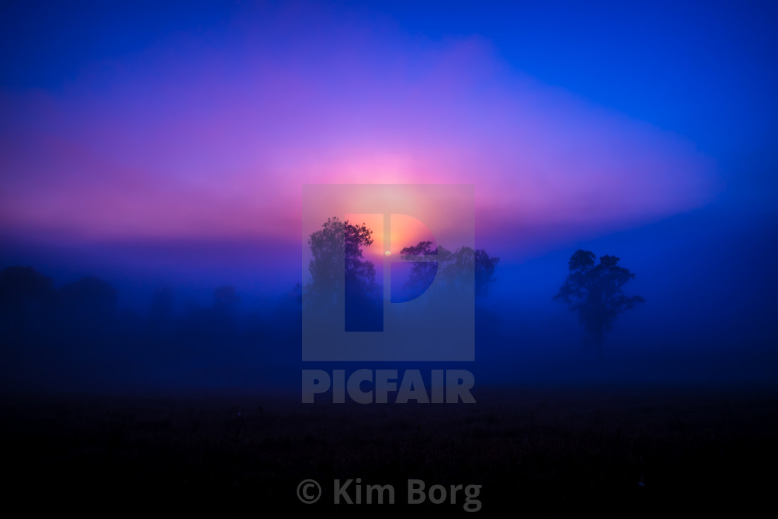 """Mystical Morning"" stock image"