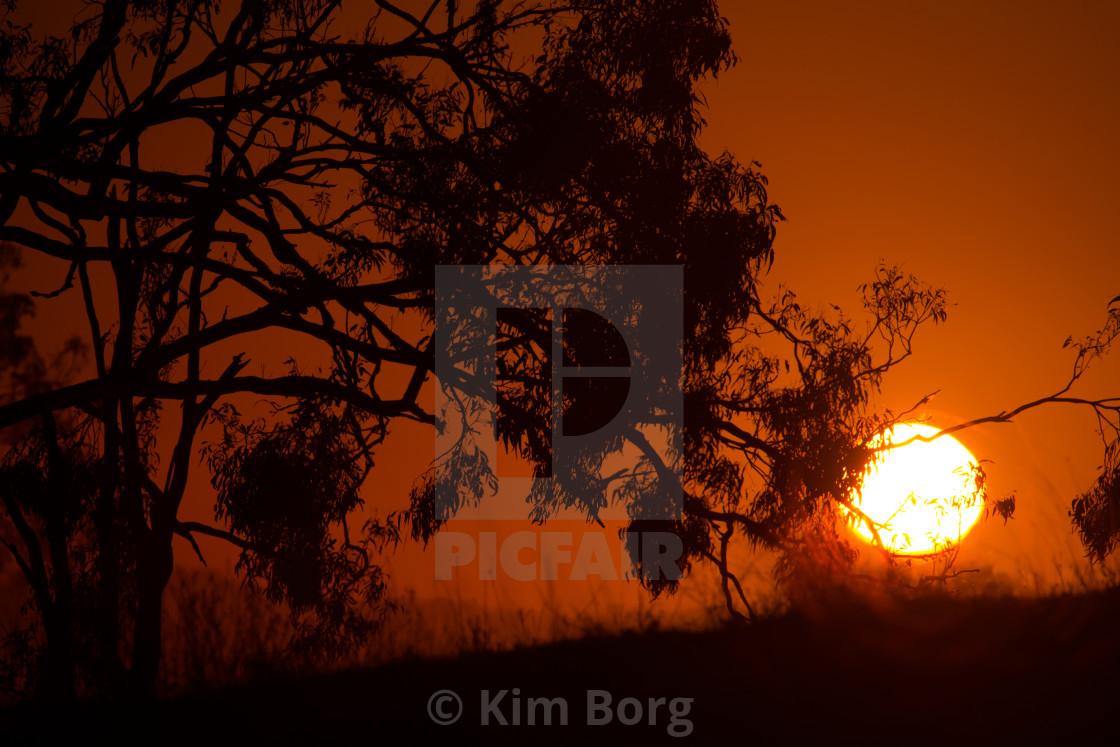 """""""Scenic Rim Sunrise"""" stock image"""