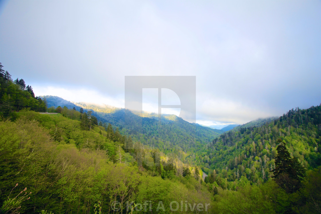"""Great Smoky Mountains"" stock image"