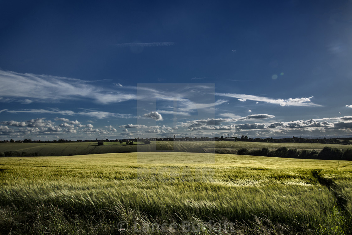 """A field somewhere in colour"" stock image"
