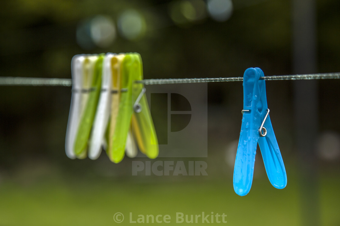 """Pegs on washing line"" stock image"