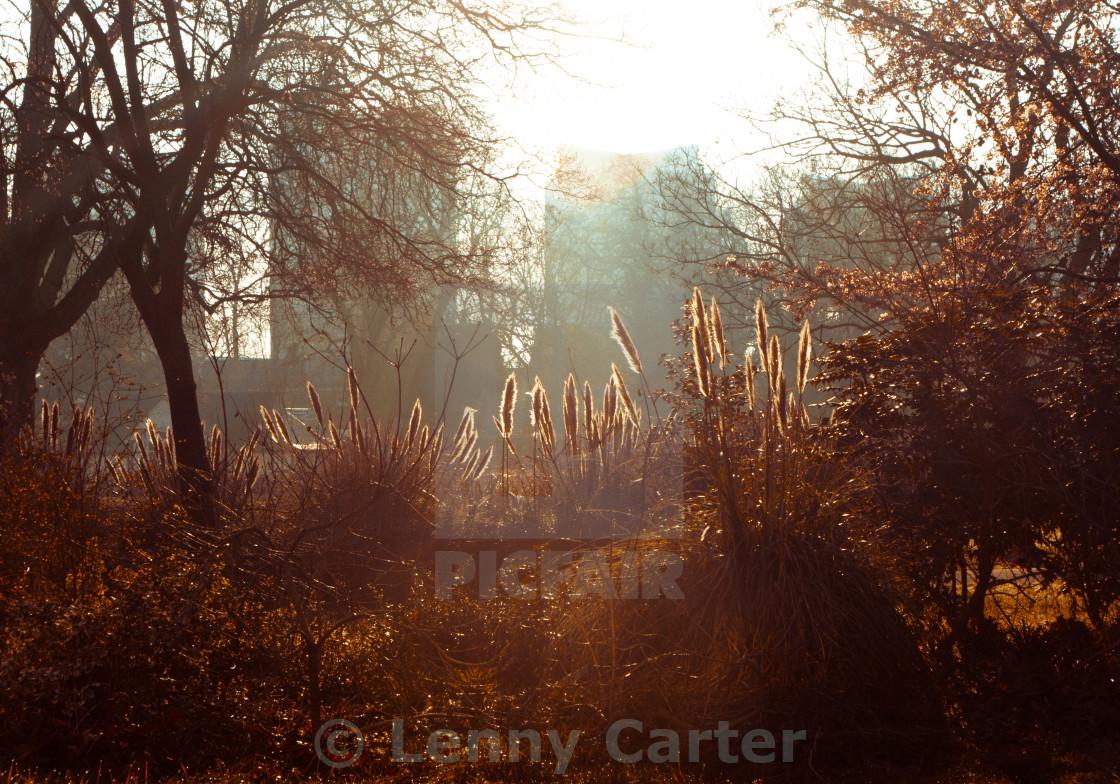 """Morning Light in City"" stock image"