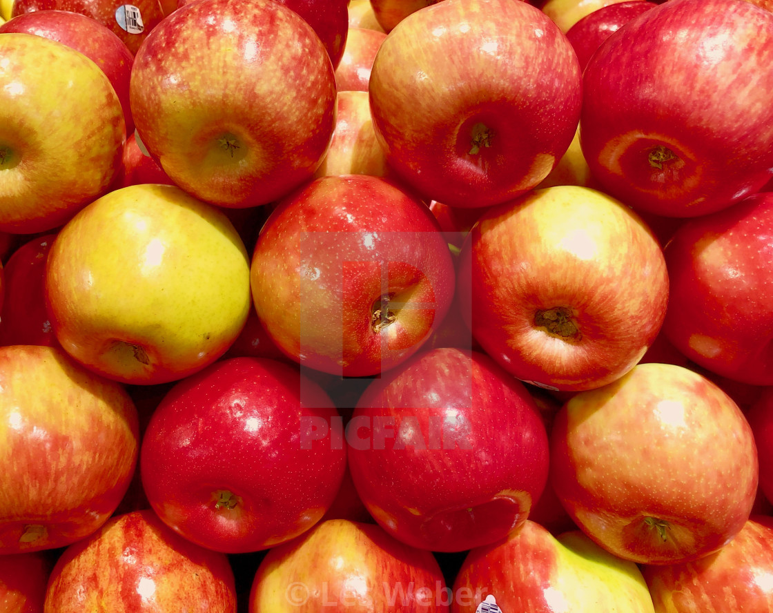 """Honeycrisp apples stacked"" stock image"