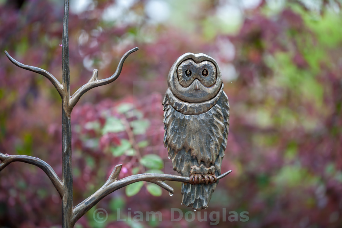 """Metal Owl Sculpture"" stock image"