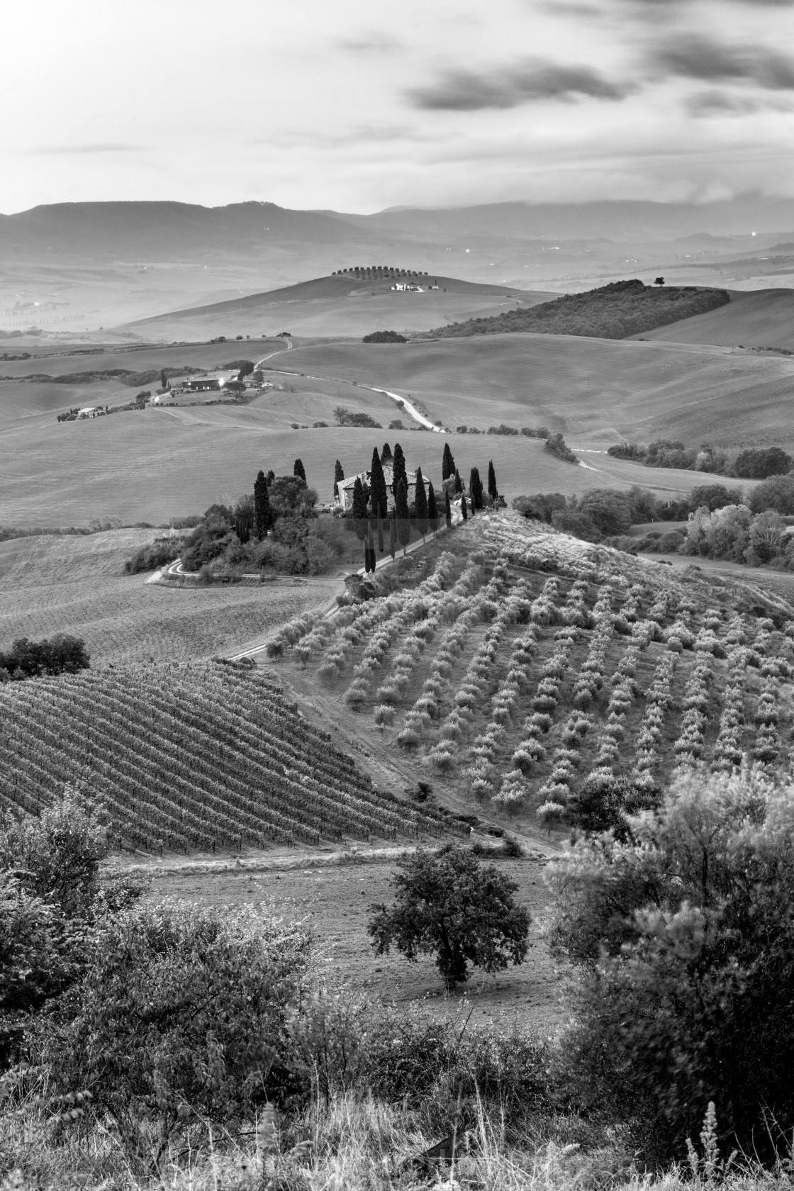 """Beautiful black and white landscape near San Quirico d'Orcia"" stock image"