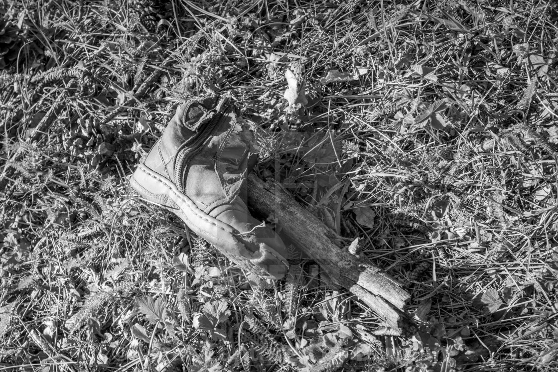 """""""Discarded old child shoe on forest grass"""" stock image"""
