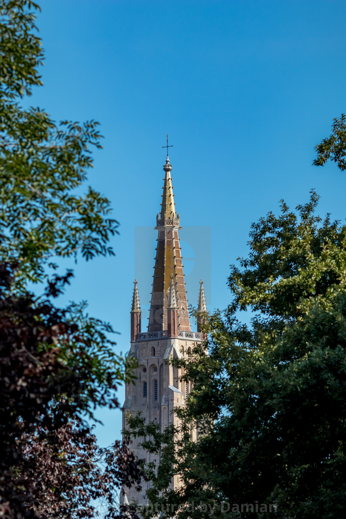 """""""Church hiding behind the branches"""" stock image"""