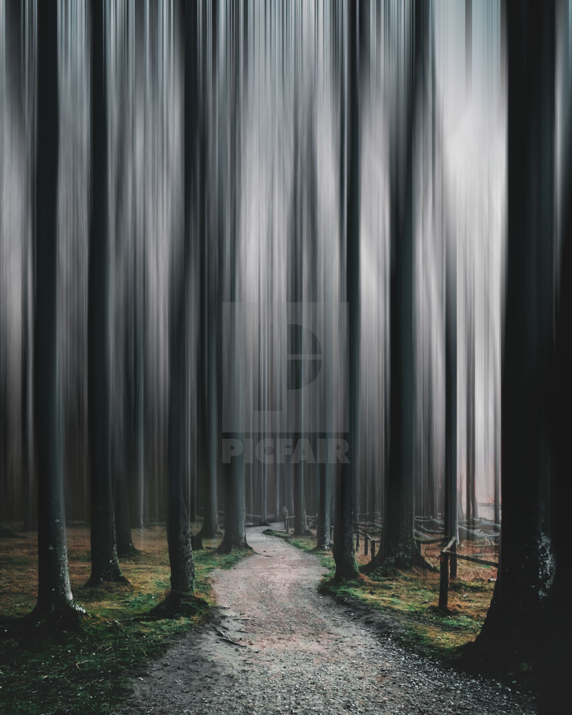 """""""Imagined Forest"""" stock image"""