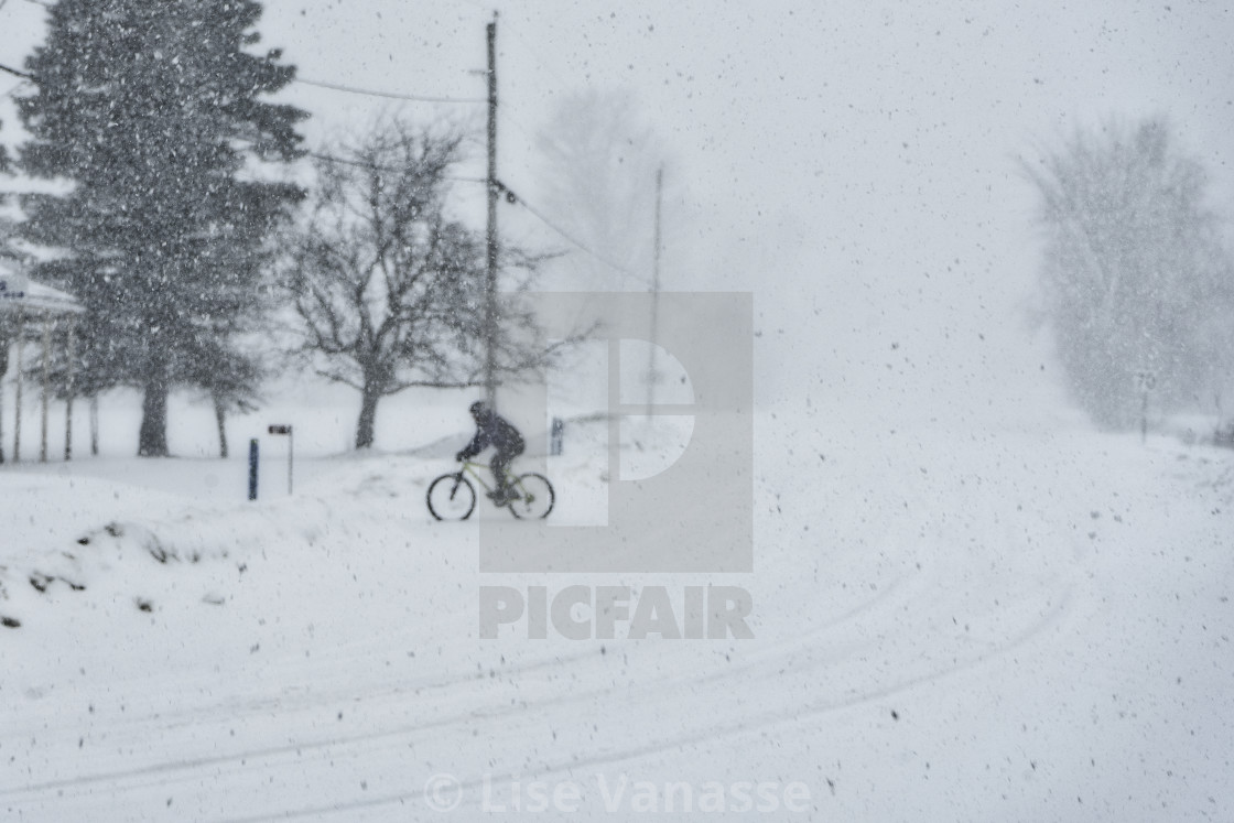 """""""A cyclist in a snowstorm."""" stock image"""