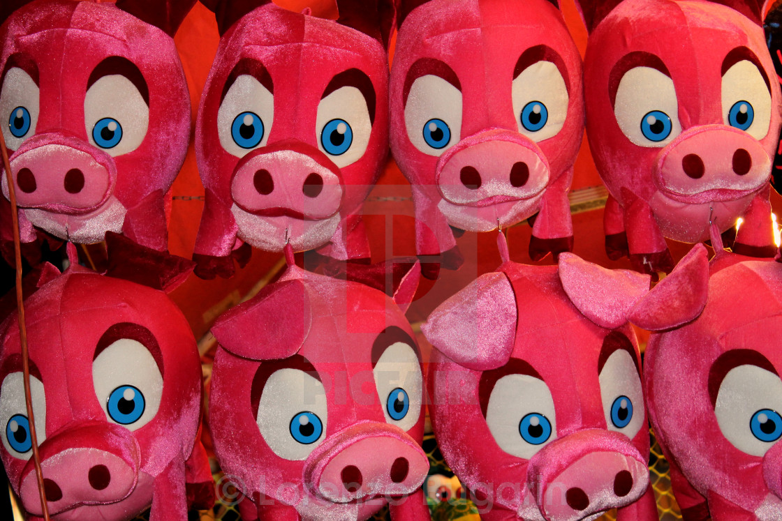 """Piggies"" stock image"