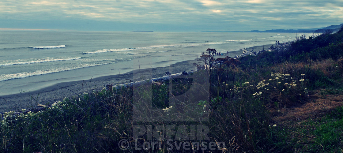 """Looking North - South Beach Washington"" stock image"