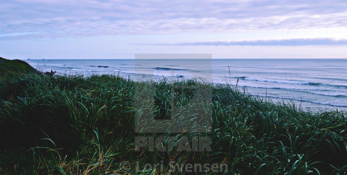 """Looking South - South Beach Washington"" stock image"