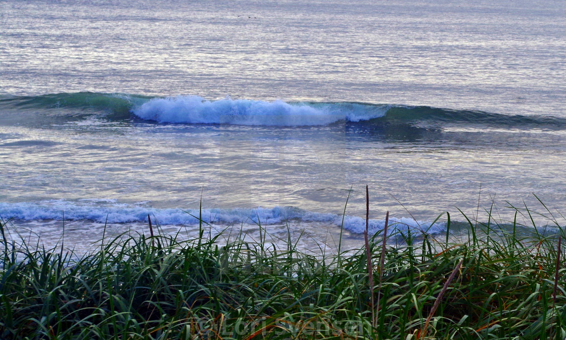 """Perfect Wave at South Beach Washington"" stock image"