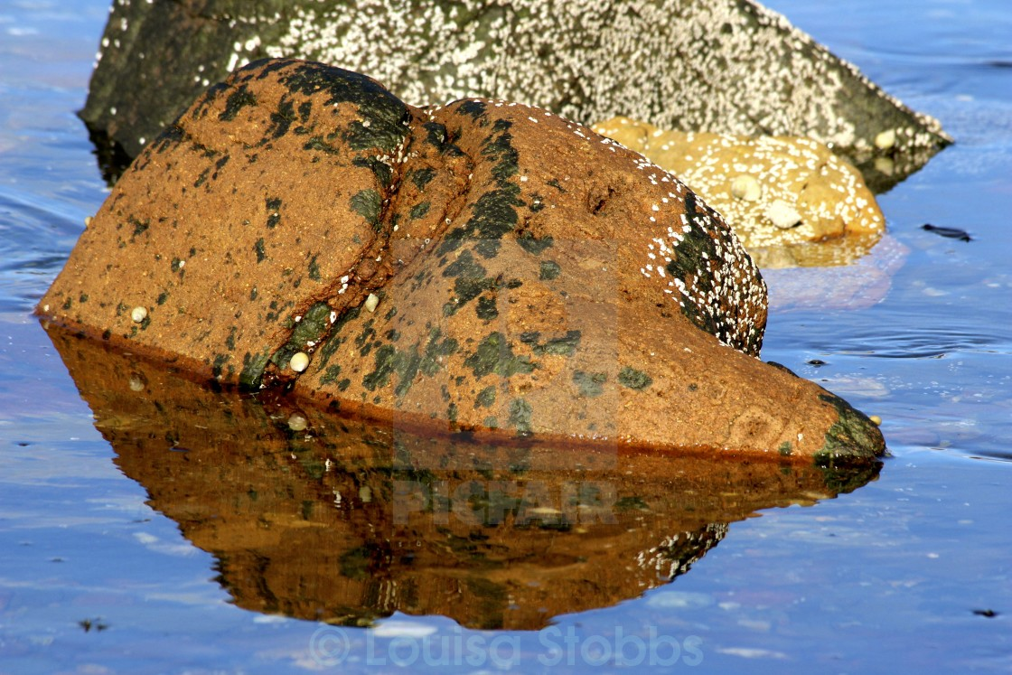 """Rock Reflections 2"" stock image"