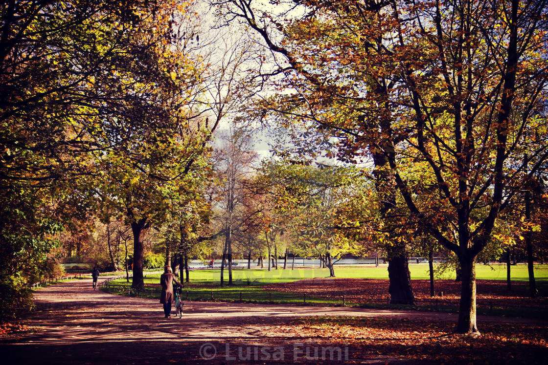 """Munich, Germany - solitary walk in Englischer Garten with red autumn leaves"" stock image"