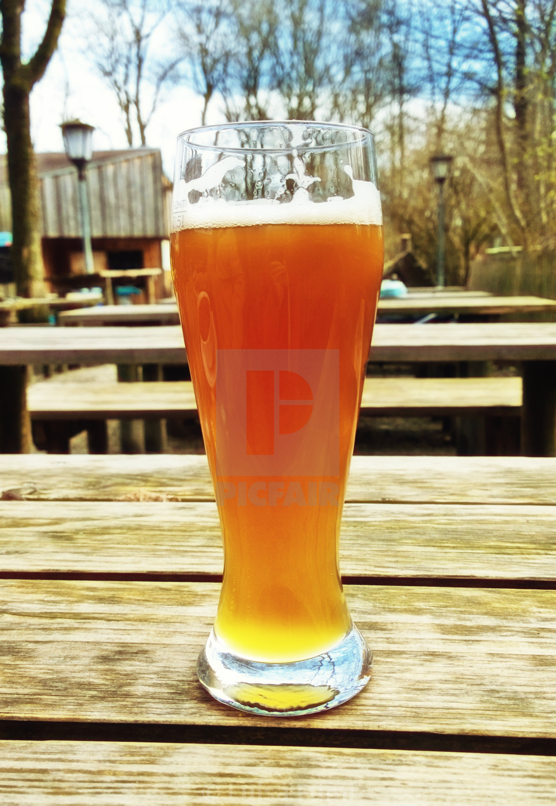 """Wheat bavarian beer in traditional glass at beer garden"" stock image"