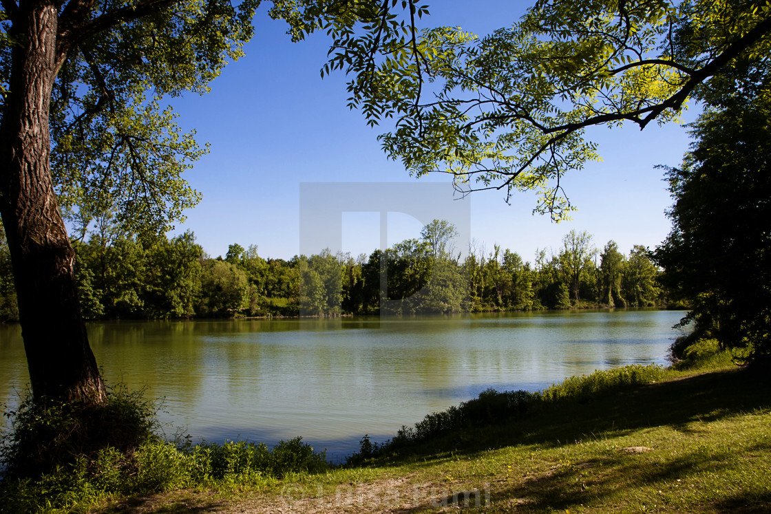 """Germany, Bavaria, summer view of Poschinger Weiher lake near Munich..."" stock image"