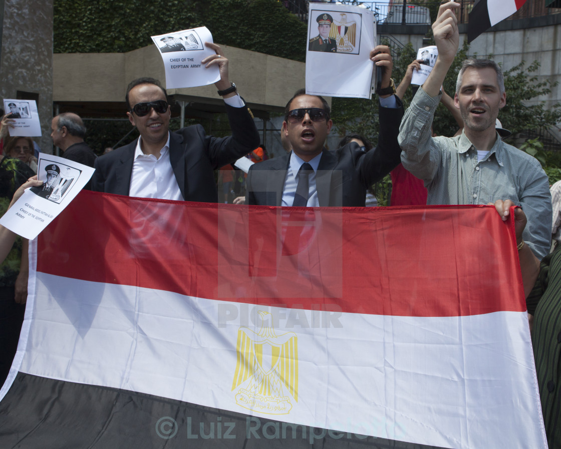 """""""Egyptians Protesters at UN"""" stock image"""