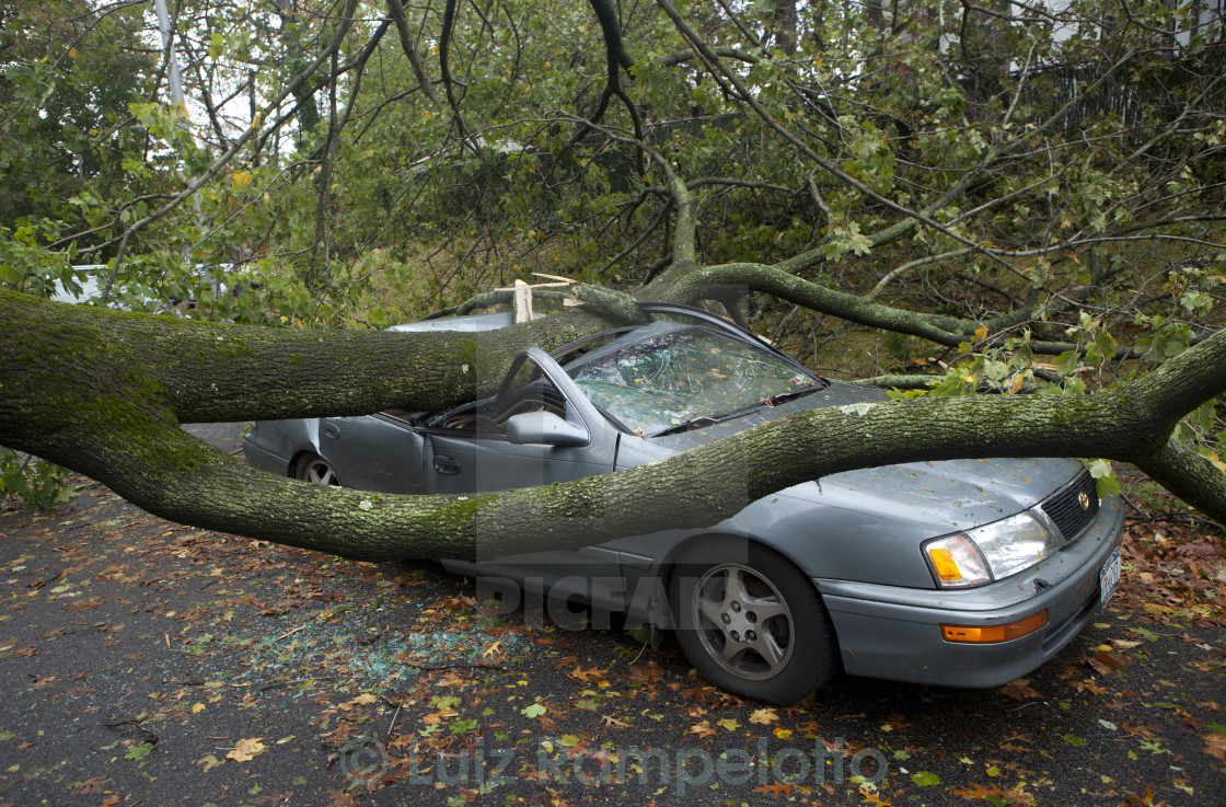 """""""After Hurricane Sandy"""" stock image"""