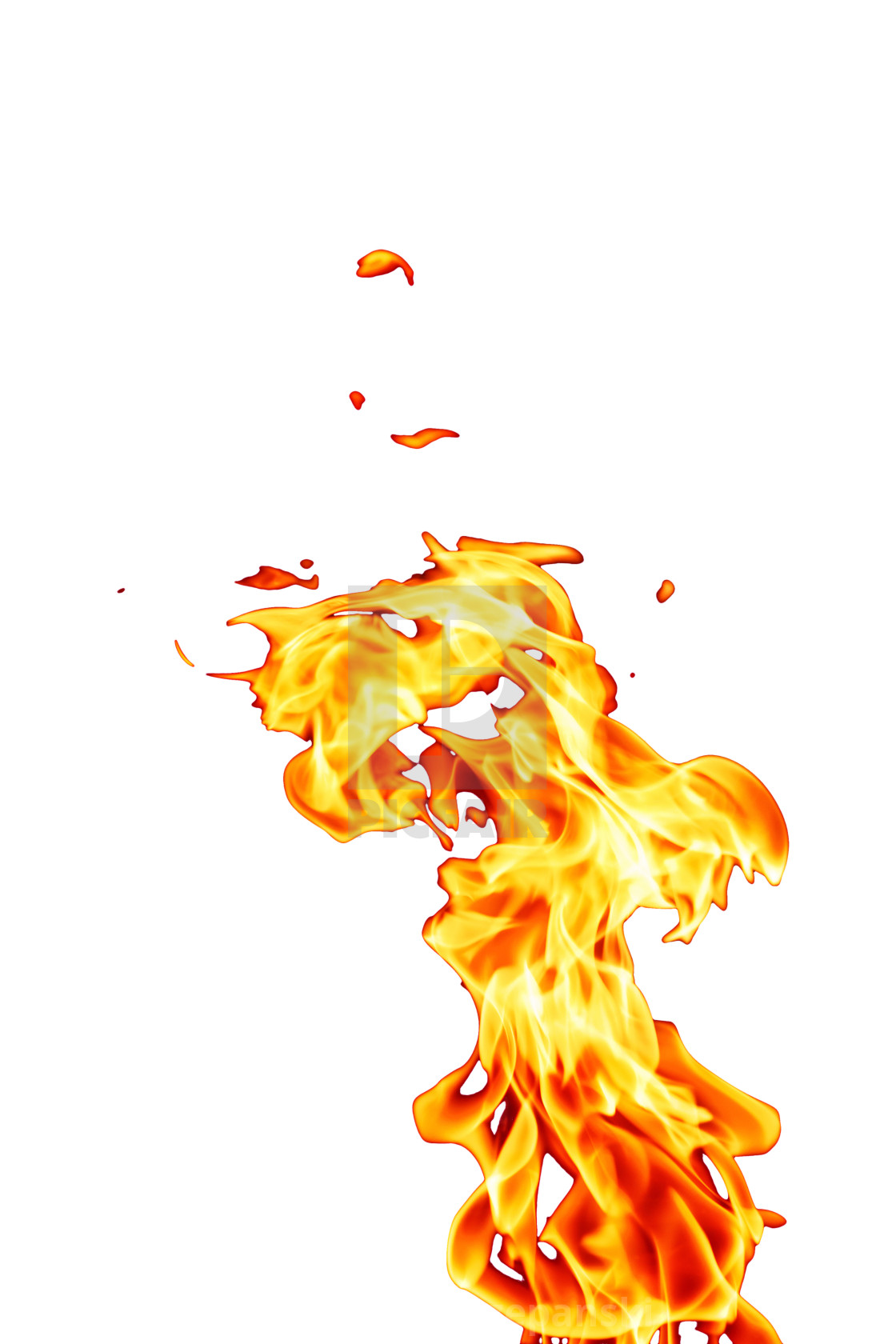 fire on white background orange fire flame isolated on white background license 558