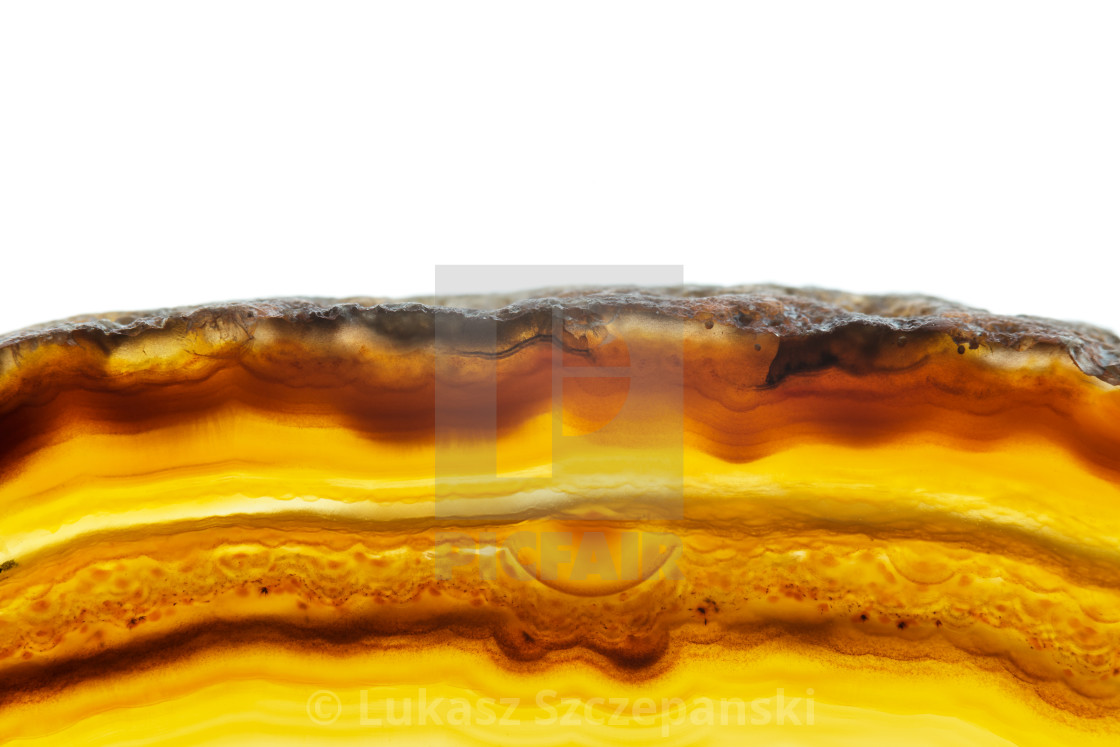 """""""Abstract background, brown and orange striped agate slice mineral cross section isolated on white background"""" stock image"""