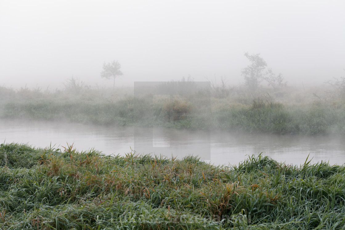 """""""Morning mist over the river"""" stock image"""
