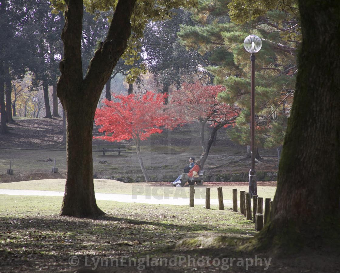 """Peaceful pause in Nara"" stock image"